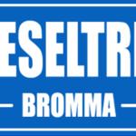 Logo Dieseltrim