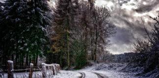 Vinter. Foto: Peter H. Licens: Pixabay.com (free use)